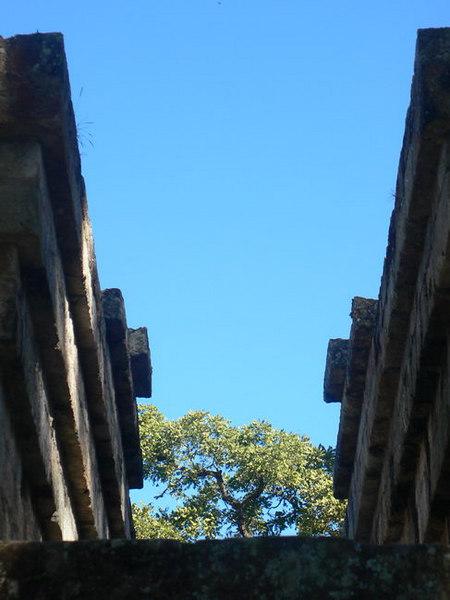 Ruins at Copan, Honduras