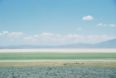 7/2/05 View of Honey Lake (dry lake) from Hwy 395 (northbound). Lassen County, CA