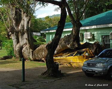 Dominica - Island