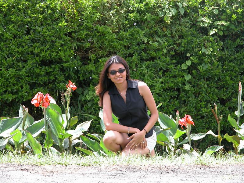 Botanical gardens, Mauritius