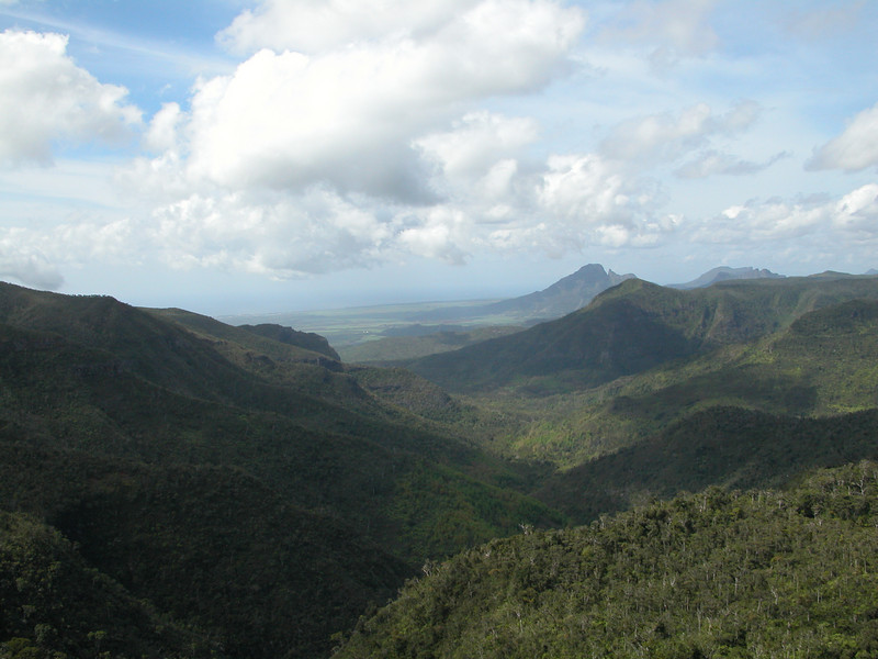 Mauritius has many hills and mountains, as shown in this landscape.