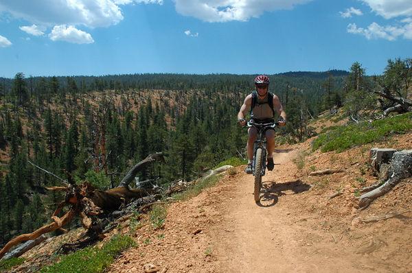 David cresting on Thunder mountain trail loop.
