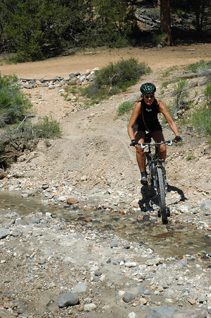 Tracey's stream crossing.