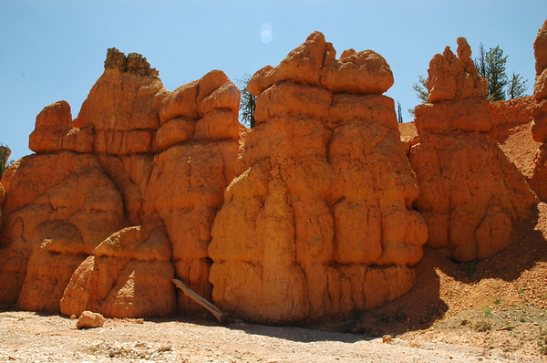 Orange pink formations in Red Canyon.
