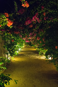 our walkway to our room