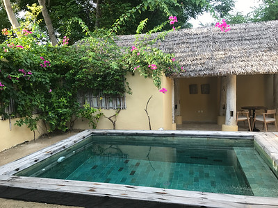 Our own private plunge pool!