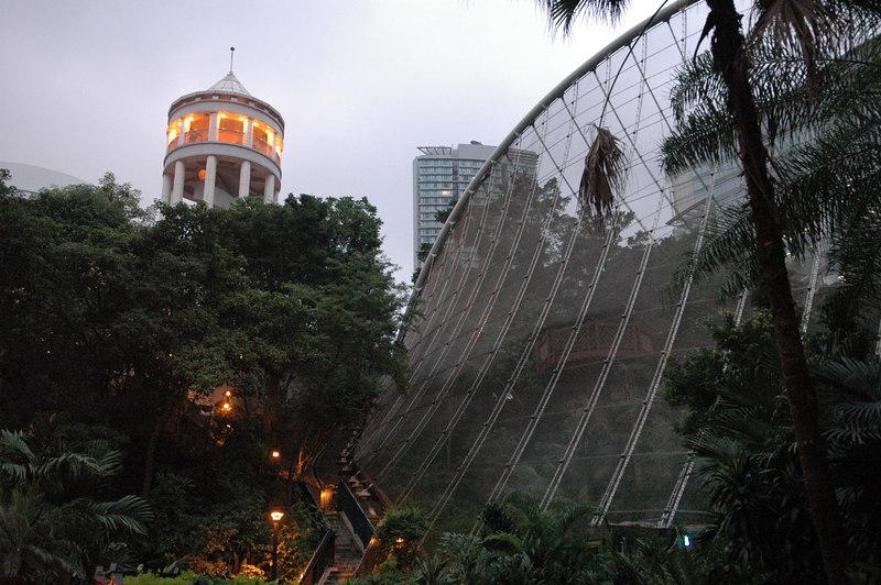 Bird Exhibit Hong Kong Park
