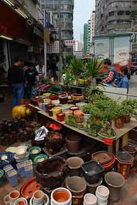Hong Kong flower market.