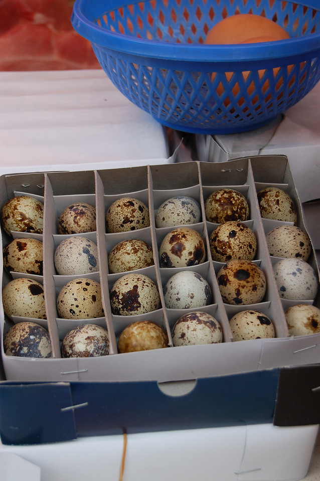 Martha Stewart eggs
