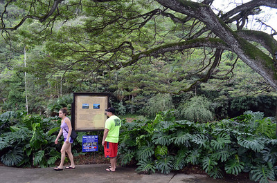 Entry to Waimea Canyon Park