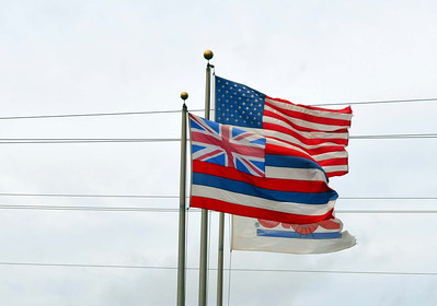 Flags at Dole Plantation