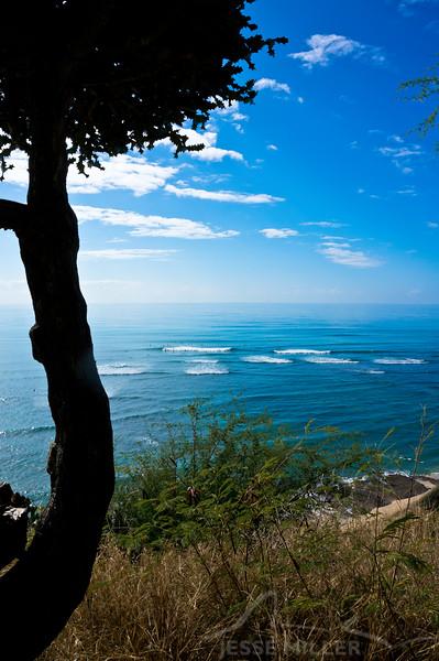 Near Diamond Head - Oahu, Hawaii