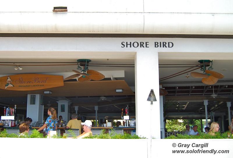 Shore Bird at the Outrigger on the Beach