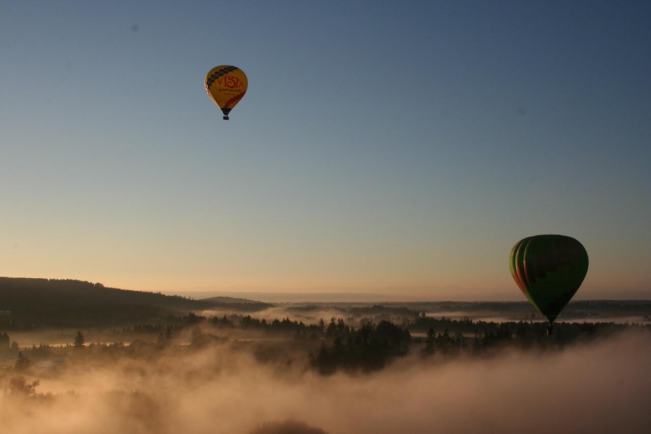 balloons over mist