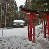 Torii of Fudoson shrine