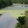 40-Acre Lake.