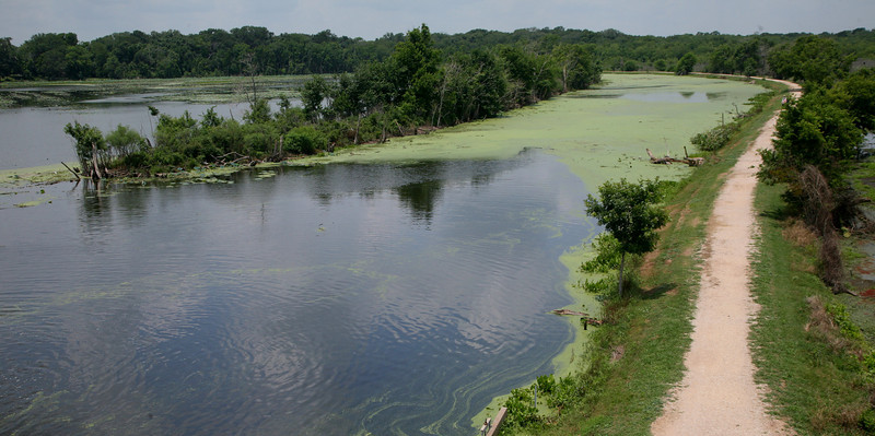 40-Acre Lake from observation tower.