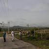 Aripo Livestock Station