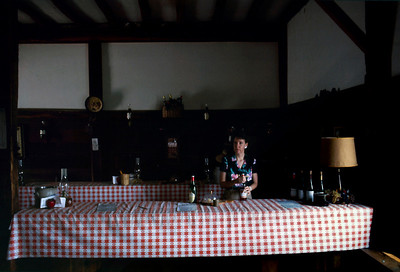Wine tasting room at Joe Cagnasso's Winery, Marlboro, NY, - c.1986