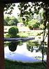 The water garden at the Vanderbilt Estate, Hyde Park, NY