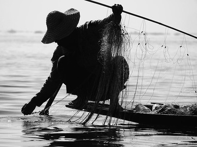 Clearing the net Inlle Lake  Myanmar