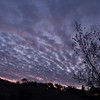 Humolt_Winter2012-0051