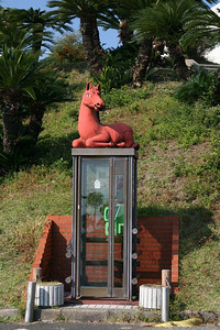 Some things are just a bad idea. Like a horse on a phone booth, here in southern Japan