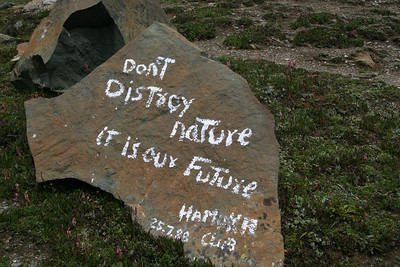 Seen on a rock in still mostly-pristine Kashmir, India.  Apparently graffiti telling us not to graffiti is ok.
