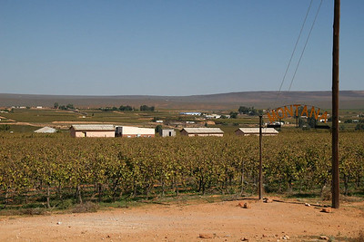 """Taken in South Africa - but the sign on the right says """"Montana"""".  Ok, so it's a vineyard instead of a cattle ranch."""