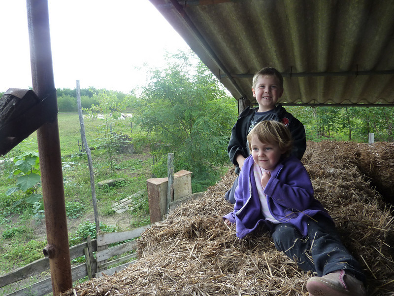 Playing in the hay loft