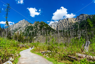 Hiking trail in the Tatra National Park
