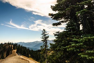 Ridge trail - not taken, but looks fun!