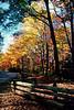 Blue Ridge Pkwy, NC, oct 17, 2000