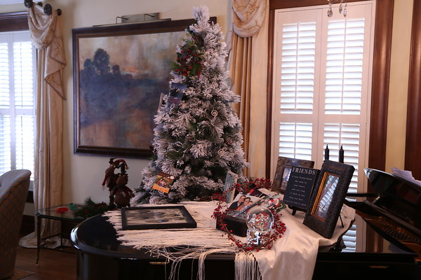 IDAHO  Christmas Tree