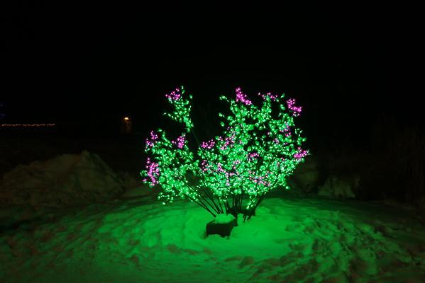 IDAHO  Christmas lights