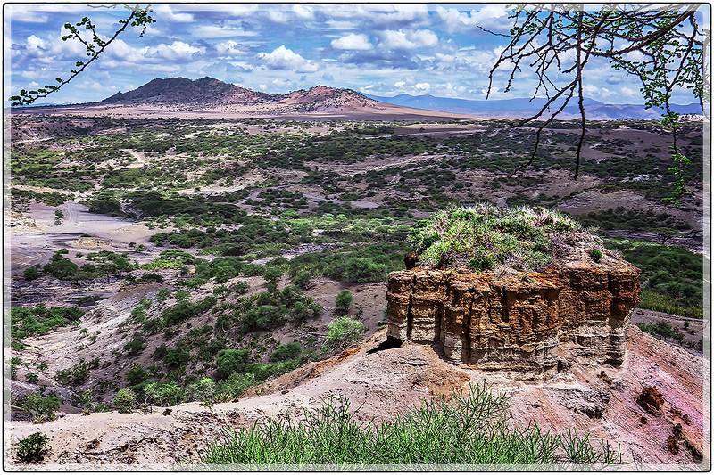 Olduvai Gorge : The Cradle of Man