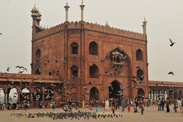 _DSC8327_masjid_end