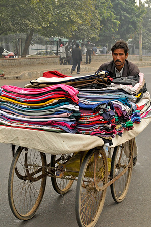 Carts of this type are seen all over India.