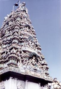 3 temple top SHANKAR