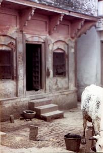 my assi house SHANKAR