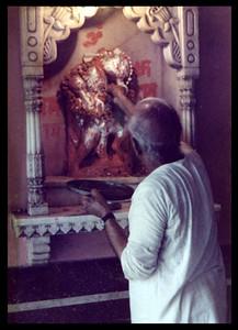 FEEDING hanuman puja SHANKAR