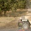 Safari jeeps on the track at Kanha