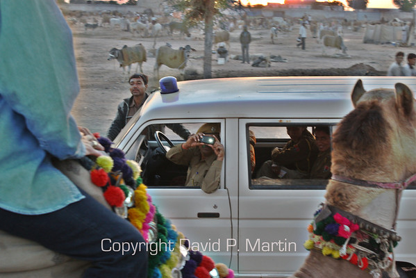 We were so unusual, that even the police stopped to take a picture while we rode by on camels.