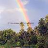 2628_06-01-15_Asu Rainbow vert.JPG