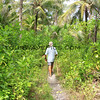 2018-03-11_Pulau Asu_1143_Jungle trail to other side of island_Tony.JPG<br /> <br /> The stick is for knocking down spider webs!