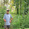 2018-03-11_Pulau Asu_1151_Jungle trail_Tony.JPG<br /> <br /> A gentleman always leads the way through the jungle, armed with a big stick!