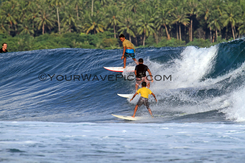 Party Wave_2507.JPG