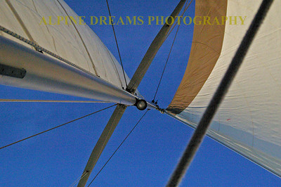Looking straight up the aluminum mast at the Mainsail into the bright Blue sky would make anyone want to sail.