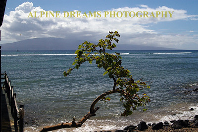 Maui has spectacular beaches with drop-dead screnery like this.