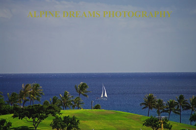 A sailboat passes a golf course on the shore of Hawaii
